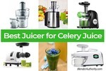 Best Juicer for Celery Juice