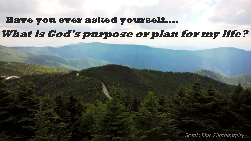 Ever Asked Yourself What is God's Purpose for Me?