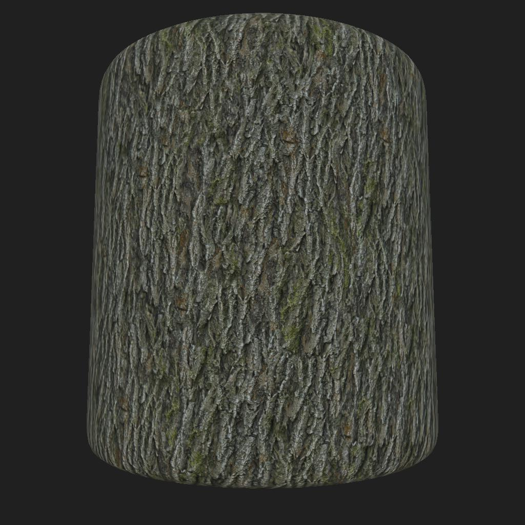 Bark_Red_Oak_large_preview_cyl_1