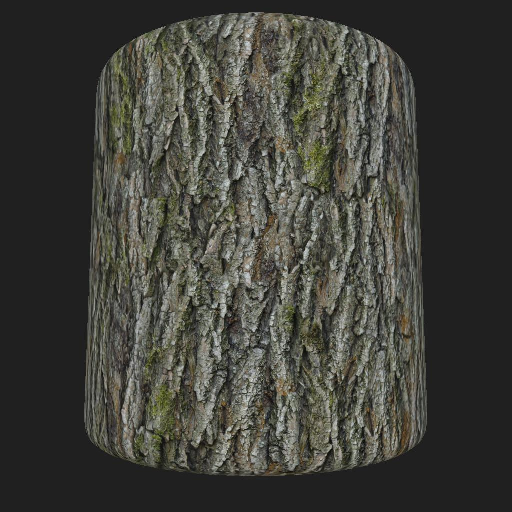 Bark_Red_Oak_preview_cyl_1