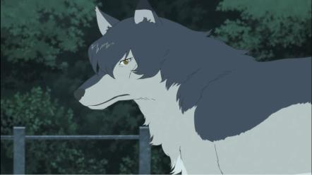 wolf children 9