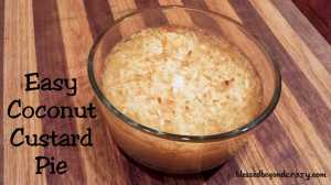 easy cocunut custard pie