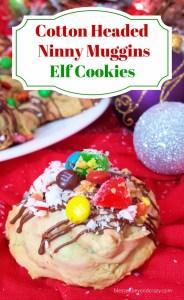Elf Cookies 2