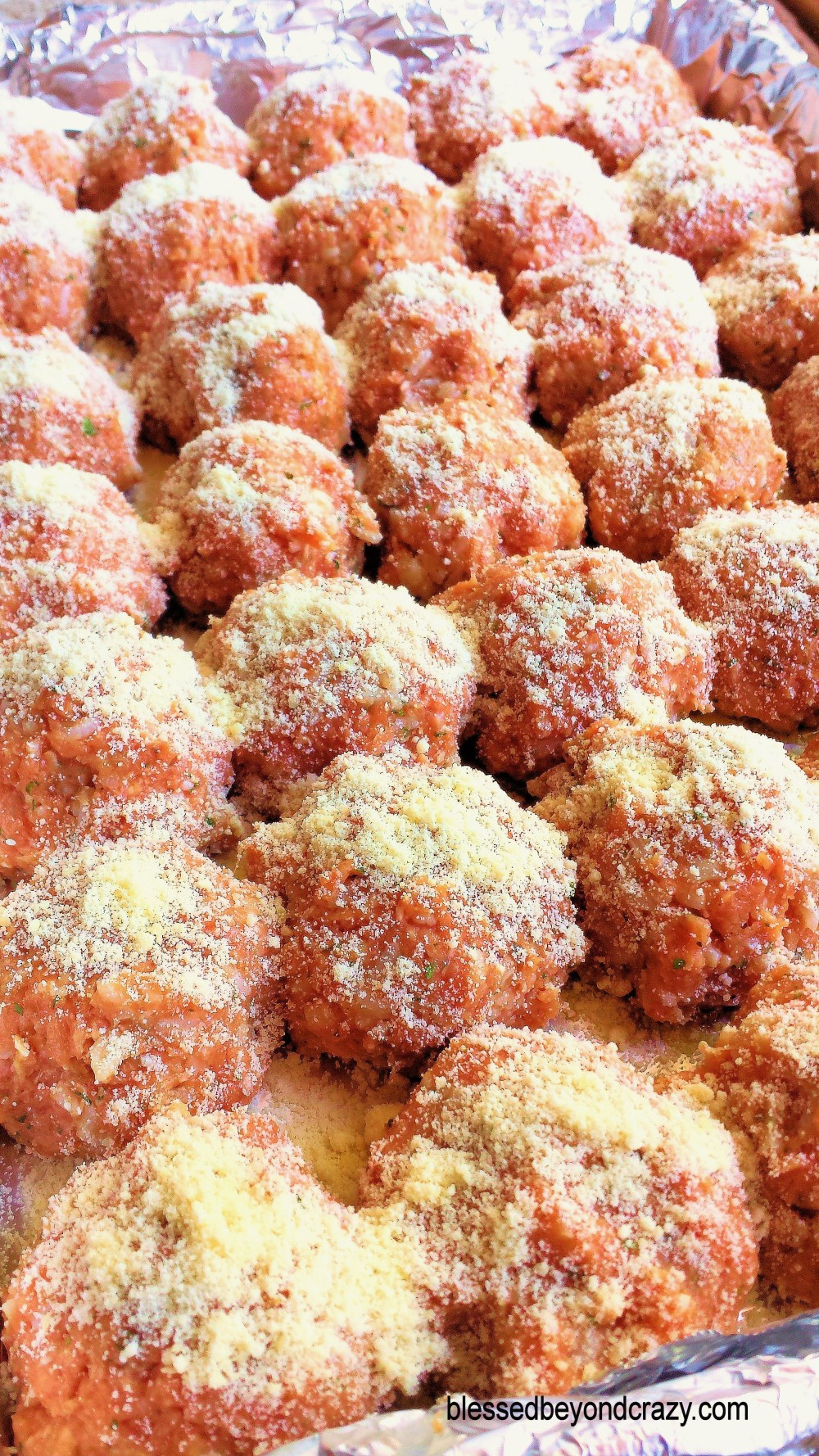 Turkey Meatballs 2
