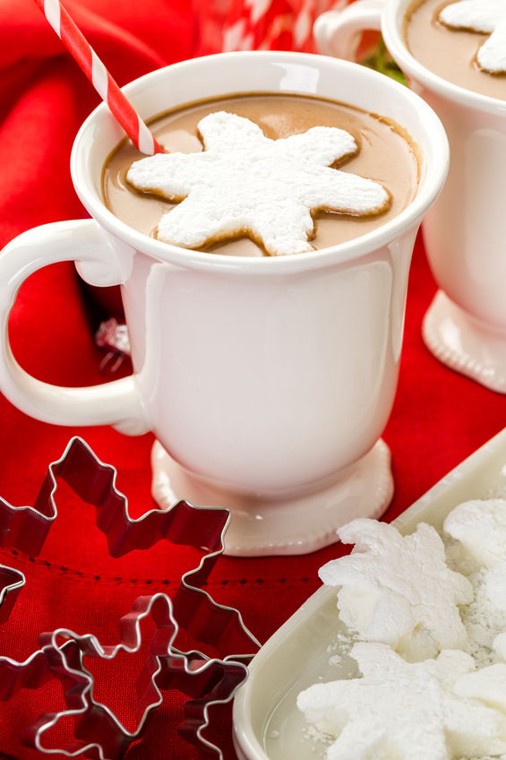 Christmas Cookie Cutter Decor 4