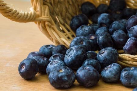 Blueberries 1