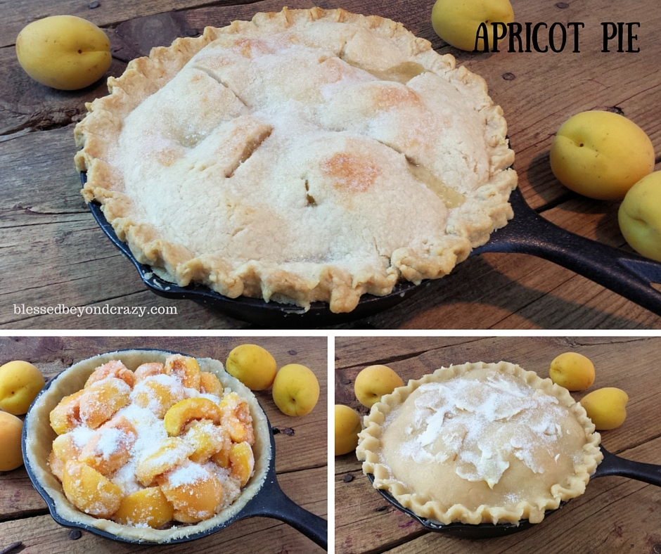 Skillet Fruit Pies 1