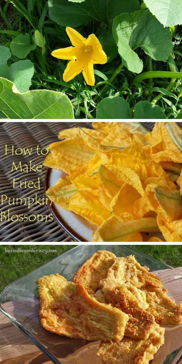 How to Make Fried Pumpkin Blossoms