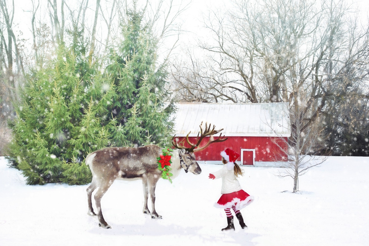 5a8ddaa4b Darling Christmas Reindeer Party Ideas -
