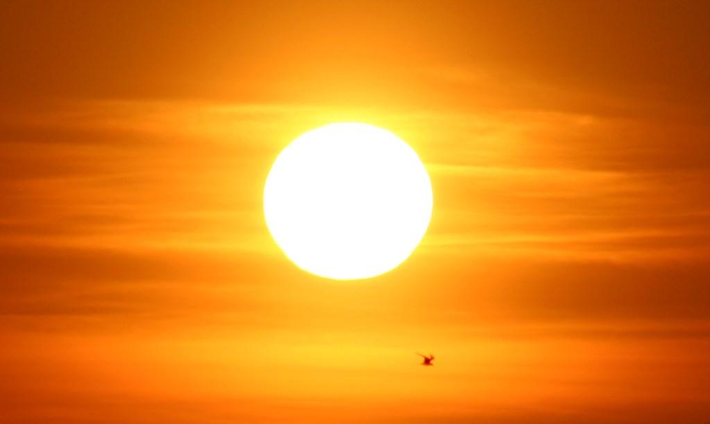 Sunny view of Cheery Sunshine Themed Ideas