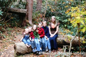 Family Portraits – A Day at the Waterfalls