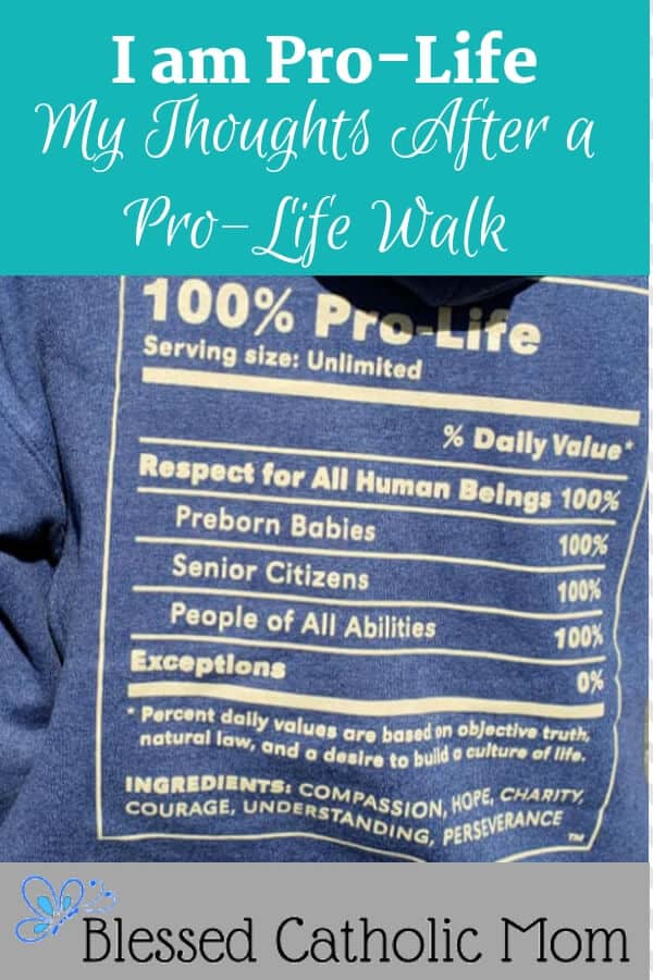 To be pro-life means to be for life, to value and protect life from conception to natural death. All life is precious. How can I live a more pro-life life? Image of the back of a hoodie sweatshirt that says 100% Pro-Life and lists preborn babies, senior citizens, and people of all abilities.