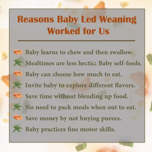 Reasons to try baby led weaning.