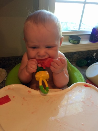 Baby eating solids at 6 months