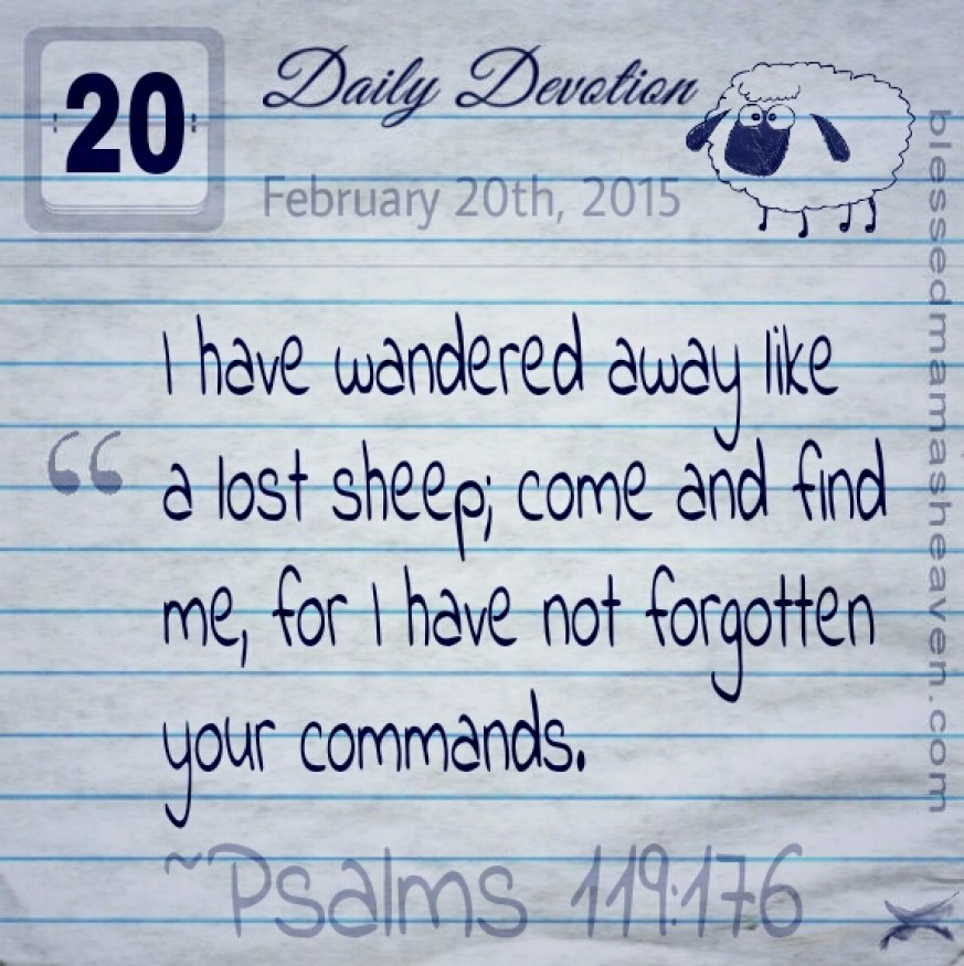 Daily Devotion • February 20th • Psalms 119:176 ~I have wandered away like a lost sheep; come and find me, for I have not forgotten your commands.