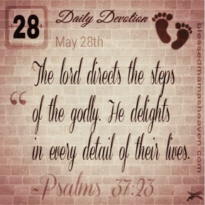 Daily Devotion • May 28th • Psalms 37:24 ~The lord directs the steps of the godly. He delights in every detail of their lives.