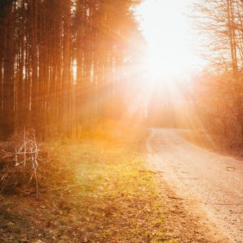 Four Ways Daily Devotions Boost Spiritual Growth