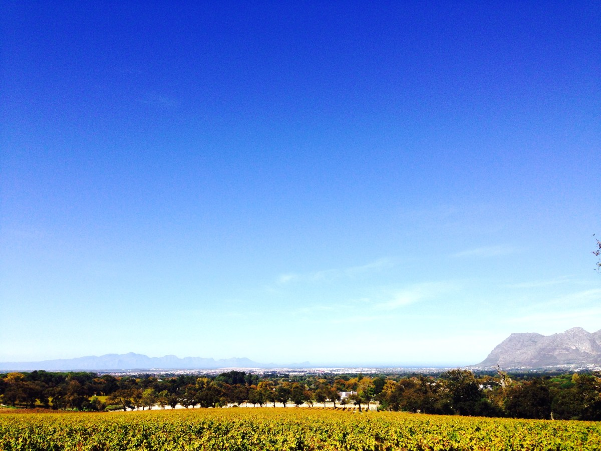 Beautiful day @GrootConstantia and great food @Jonkershuis