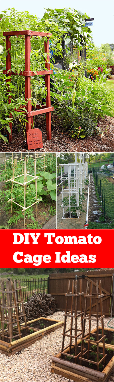 DIY Tomato Cage Ideas