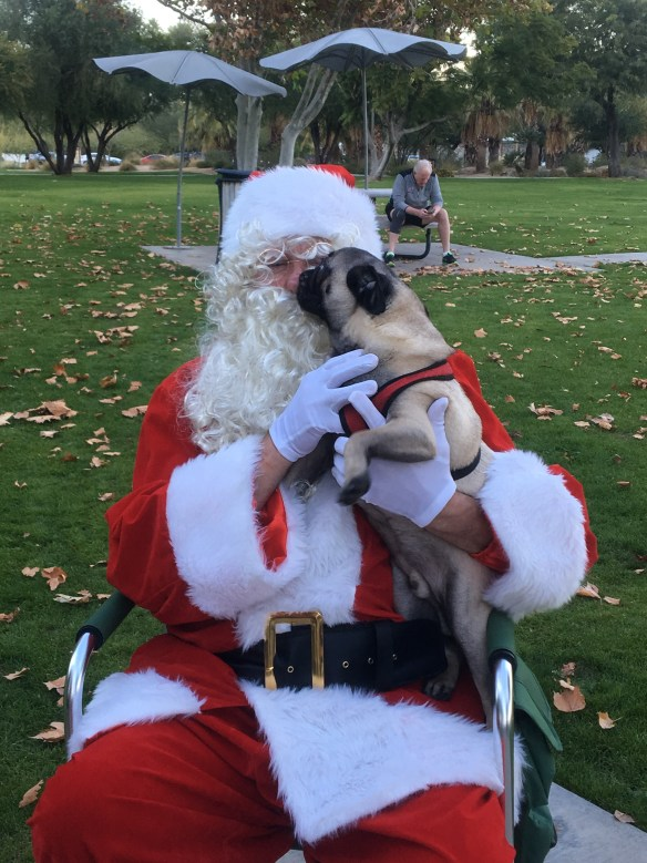 pug licking Santa's face