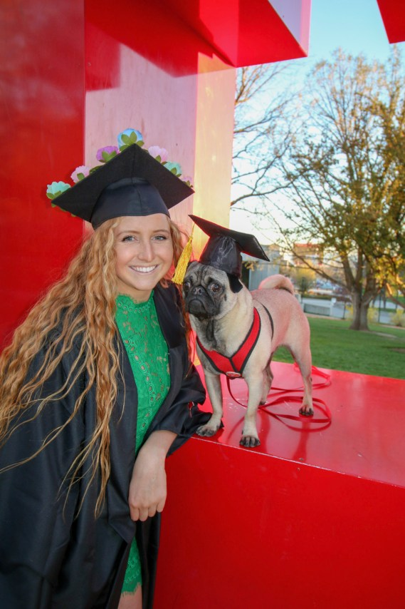 college grad and pug with mortar boards