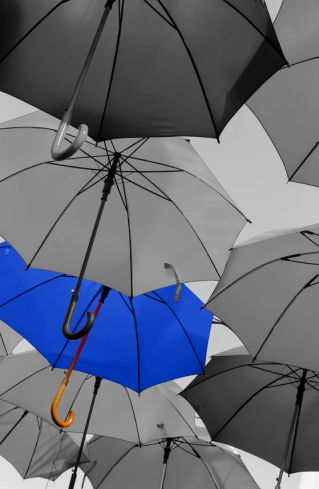 44289182 - umbrella standing out from the crowd unique concept