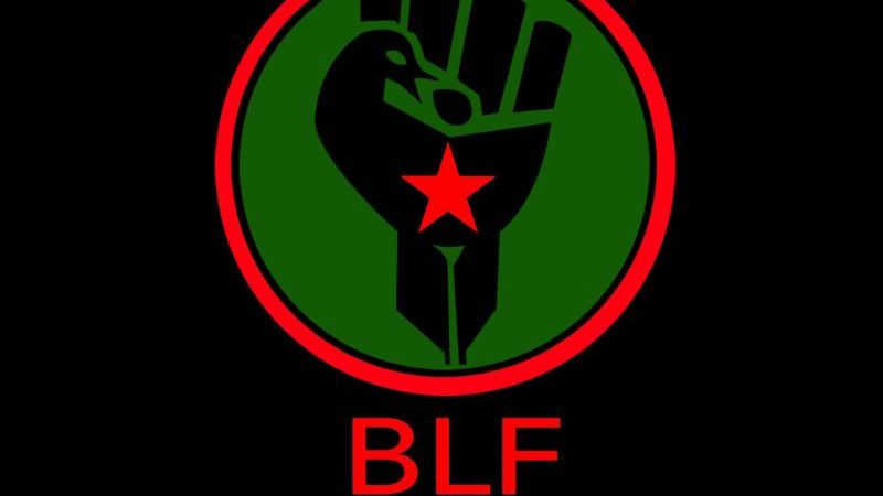 BLF CALLS FOR NATIONAL SHUTDOWN UNTIL VUSI OLDMAN MAHLANGU IS RELEASED AND ALL STUDENT/WORKER DEMANDS ARE MET