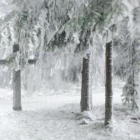 Frozen | Gefroren - Picture my song