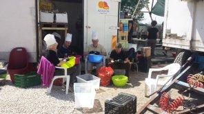 Hot Food Idomeni Helfer beim Gemüseschälen