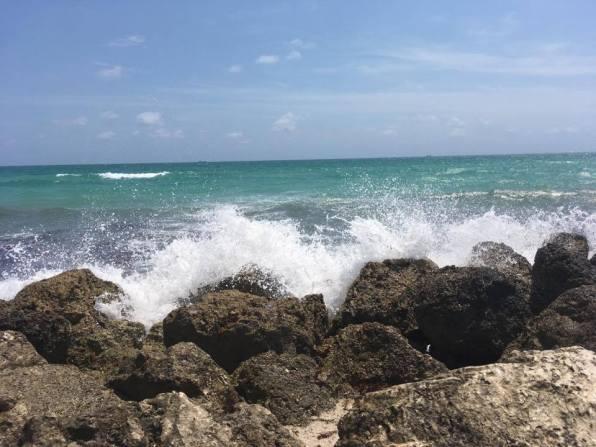 Schatzsucher / Miami Beach