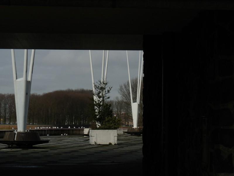 meeuwen-sloterplas-oostoever-12042014