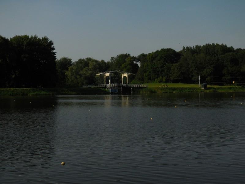 Zon, bos, brug en picknickende mensen in de verte