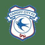 English Premier League football club.
