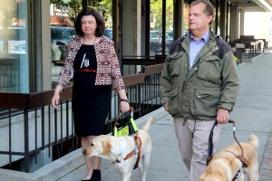 Lisa Ferris and Niklas Petersson both walk with guide dogs along a sidewalk.