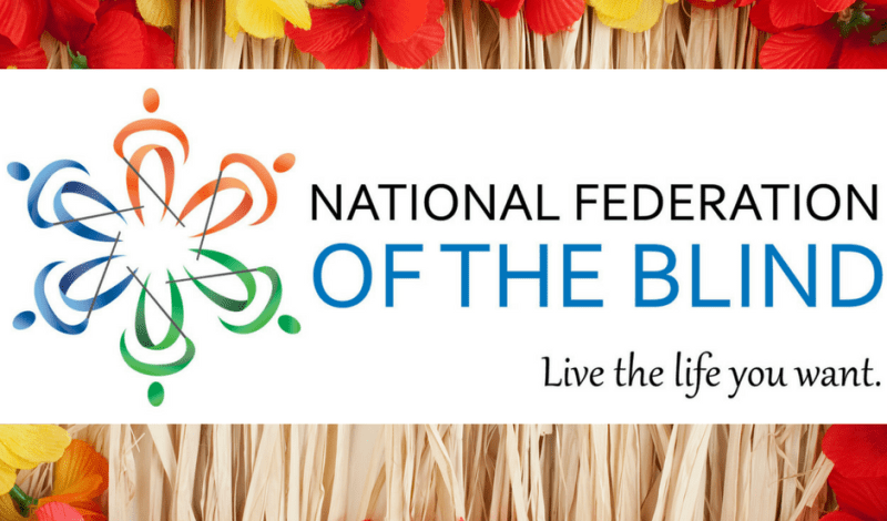Join the National Federation of the Blind Parent Mentoring Program