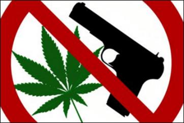 Guns or Pot - Your Choice