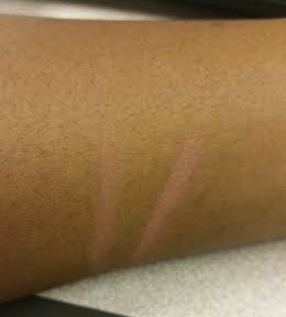 mary kay eye primer swatch