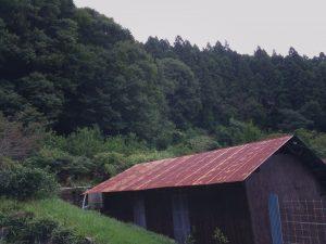 Blinkの革工房周辺の風景