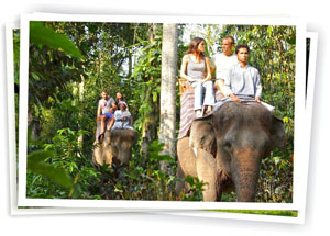 elephant_safari_ride1
