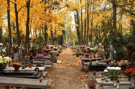 opieka nad grobami poznań