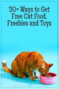 Get Free Cat Food Samples Freebies and Toys