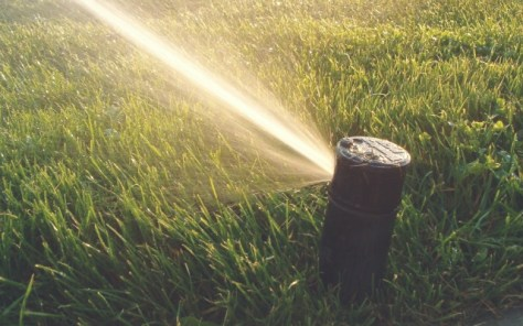 Sprinklers resemble what squirting looks like