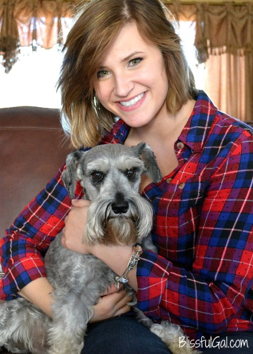 Gray miniature schnauzers are so cute and well-trained!