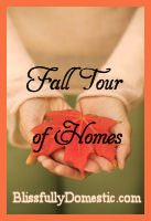 Blissfully Domestic Fall Tour of Home