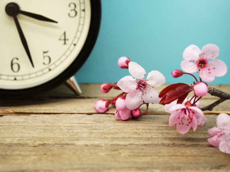 "Sleep Through the ""Spring Forward"" Time Change"