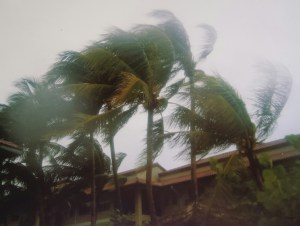 The winds of Hurricane Charley on Grand Cayman. The camera is covered with a clear plastic bag for protection.