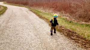 Picture of little boy in a coat and hat, walking on a path in the fall. No drama here!