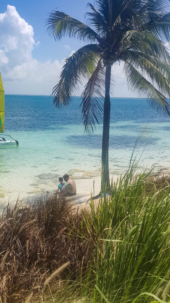 a child and her father, seen through tall grass and a palm tree, enjoying the beach at Club Med.