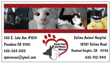 Fridge Magnet for Animal Rescue Non-profit
