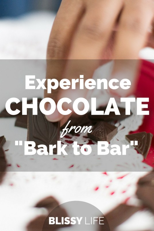 Experience CHOCOLATE from -Bark to Bar-